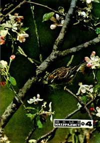Юный натуралист №04/1975 — обложка книги.