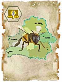 Пчеловодство в Белоруссии — обложка книги.
