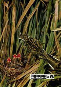 Юный натуралист №08/1975 — обложка книги.