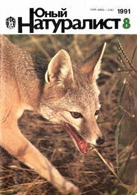 Юный натуралист №08/1991 — обложка книги.