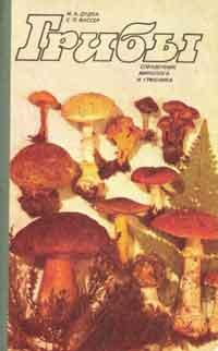 Грибы справочник миколога и грибника — обложка книги.