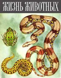 Жизнь животных. Том 4. Часть 2 — обложка книги.
