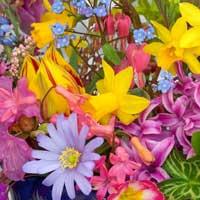 Цветы такие разные!