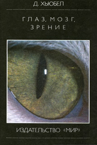 Глаз, мозг, зрение — обложка книги.