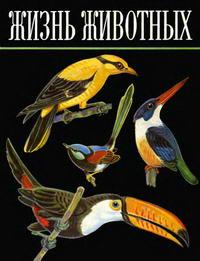 Жизнь животных. Том 5 — обложка книги.