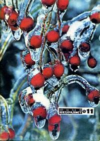 Юный натуралист №11/1973 — обложка книги.