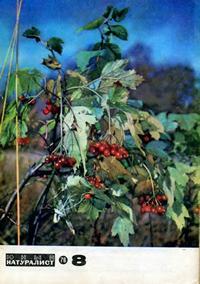 Юный натуралист №08/1976 — обложка книги.