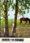Юный натуралист №09/1977 — обложка книги.