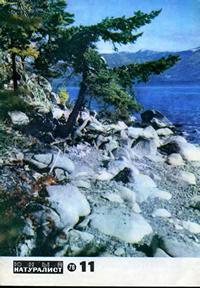 Юный натуралист №11/1976 — обложка книги.