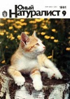Юный натуралист №09/1991 — обложка книги.