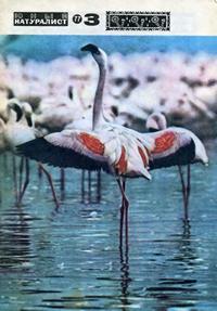 Юный натуралист №03/1977 — обложка книги.