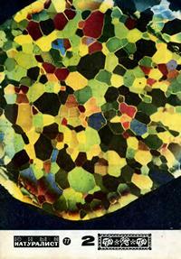 Юный натуралист №02/1977 — обложка книги.