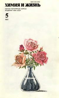 Химия и жизнь №05/1981 — обложка книги.