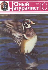 Юный натуралист №10/1981 — обложка книги.