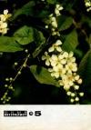Юный натуралист №05/1976 — обложка книги.