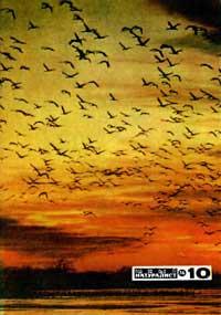 Юный натуралист №10/1974 — обложка книги.
