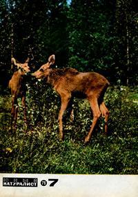Юный натуралист №07/1976 — обложка книги.