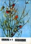 Юный натуралист №01/1977 — обложка книги.