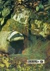 Юный натуралист №09/1975 — обложка книги.