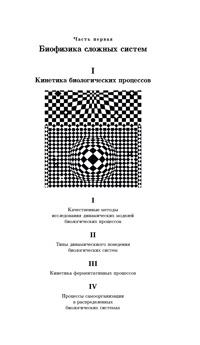 Кинетика биологических процессов. Ч. 2 — обложка книги.