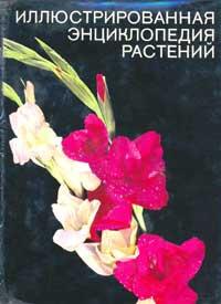 Иллюстрированная энциклопедия растений — обложка книги.